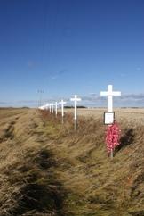 Edmonton Roadside Crosses resized